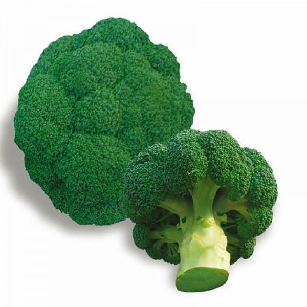 Seminte bio broccoli
